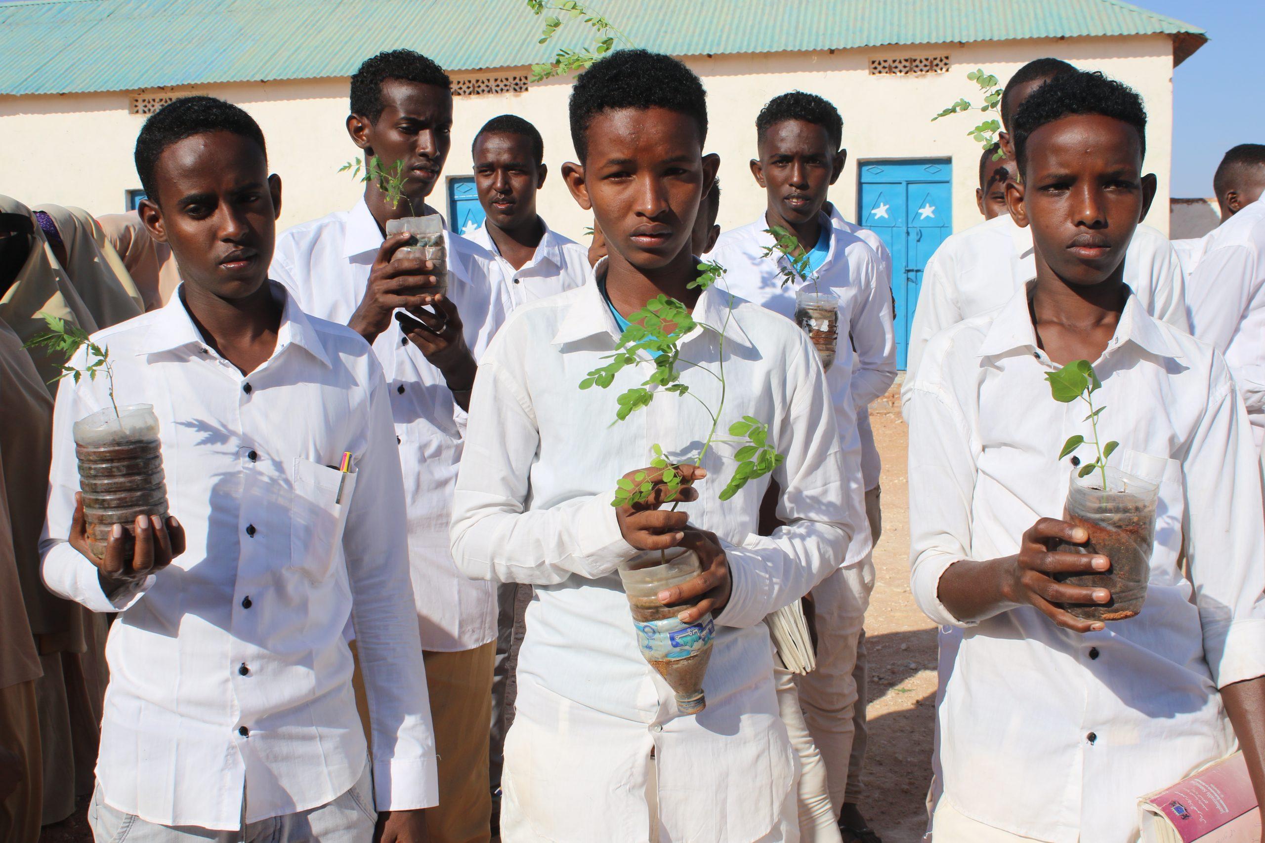 Valkoisiin asuihin pukeutuneet somalialaiset pojat pitelevät puuntaimia käsissään.